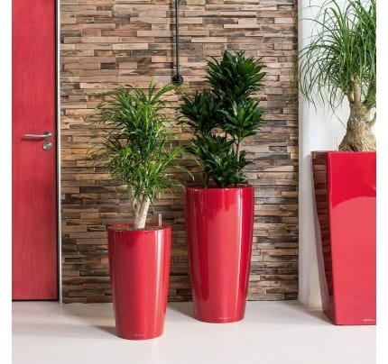 Lechuza Rondo Planters choosing the right size planter