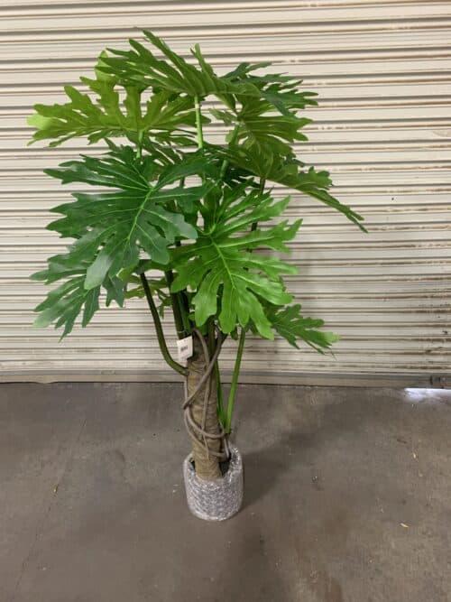 Artificial Plumeria Split Leaf