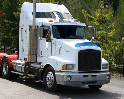 Light and heavy trucks