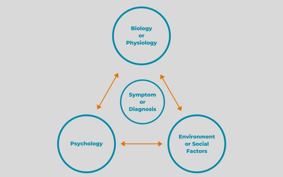 What is a Biopsychosocial Approach?