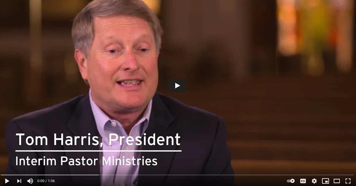 Video - Working with Your Interim