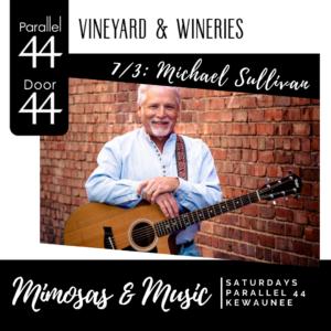 Michael Sullivan live music