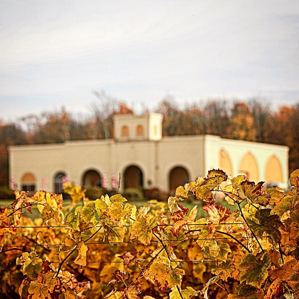 Parallel 44 Winery In Fall