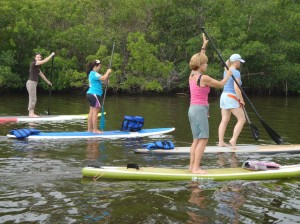 stand up paddle boarding on the indian river lagoon
