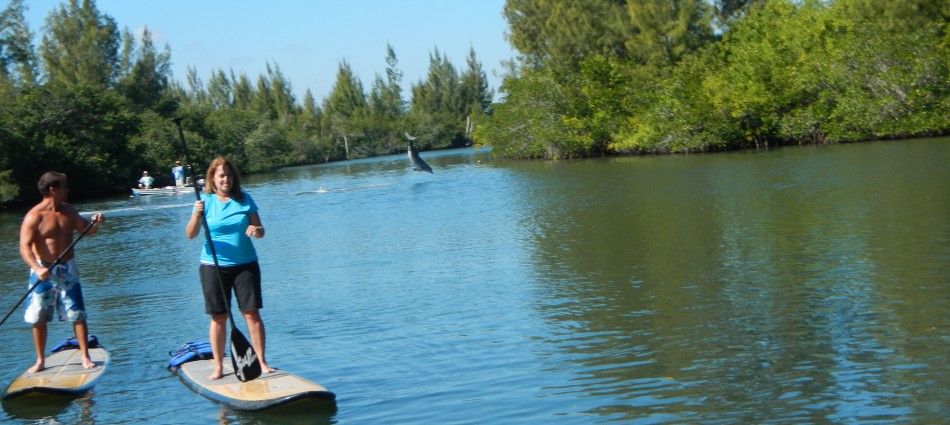 stand up paddle boarding adventure tour with supecoadventures minutes from cocoa beach melbourne beach and vero beach in central floridas east coast (19)