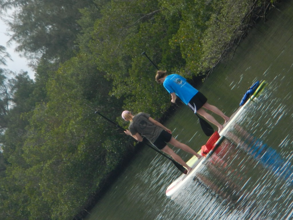 stand up paddle boarding adventure fun tour with supecoadventures minutes from cocoa beach vero beach and melbourne beach in central floridas space coast indian river lag (43)