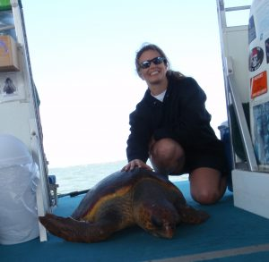 Joined Turtle Researchers on the Indian River Lagoon