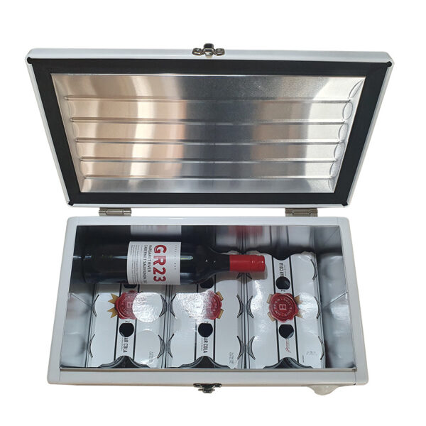 20lt Retro Esky Retro Cooler Chest showing should fit 24 cans and 2 bottles of wine
