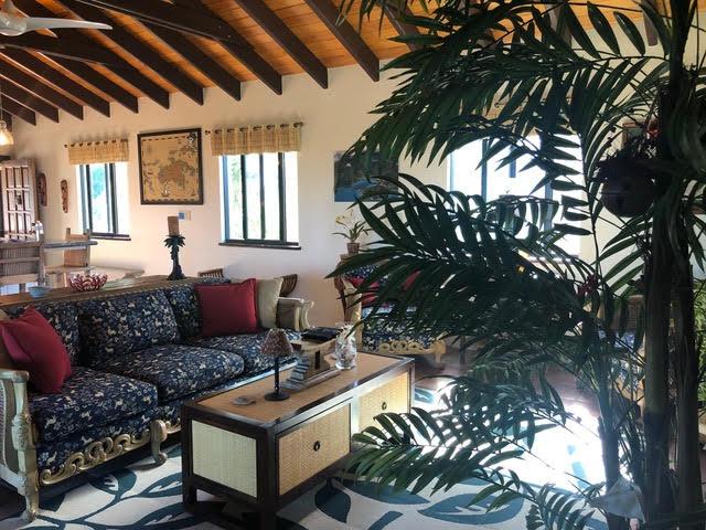Dos Palmas Living Room