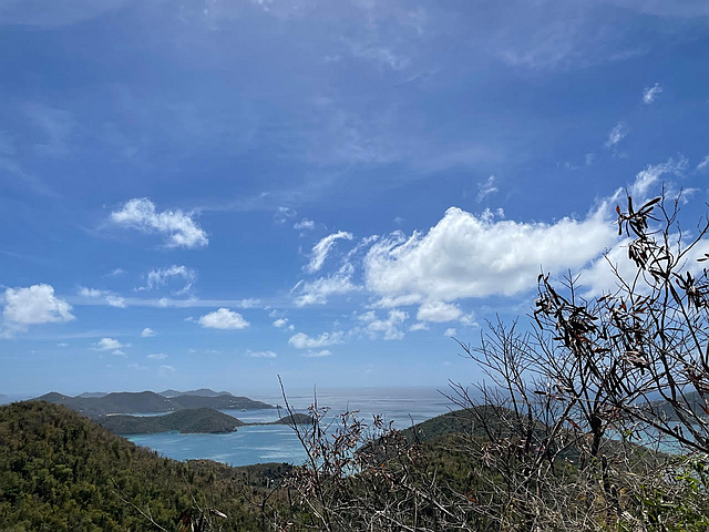 5D Leinster Bay for sale.