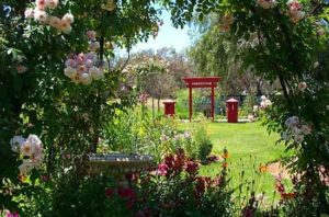 Shinto-Gate-thru-garden