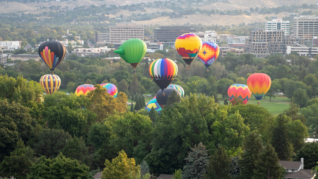 A number of hot air balloons floating up to the sky