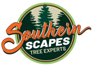 Southern Scapes