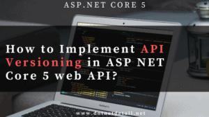 Asp Net Core 5 web api versioning