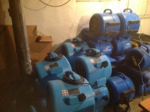 sewage-2-300x224