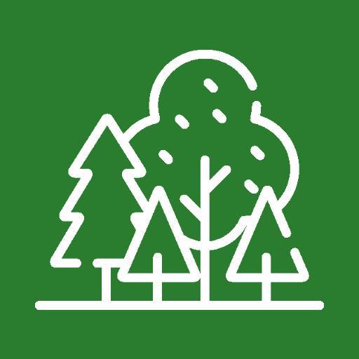 Light Forestry