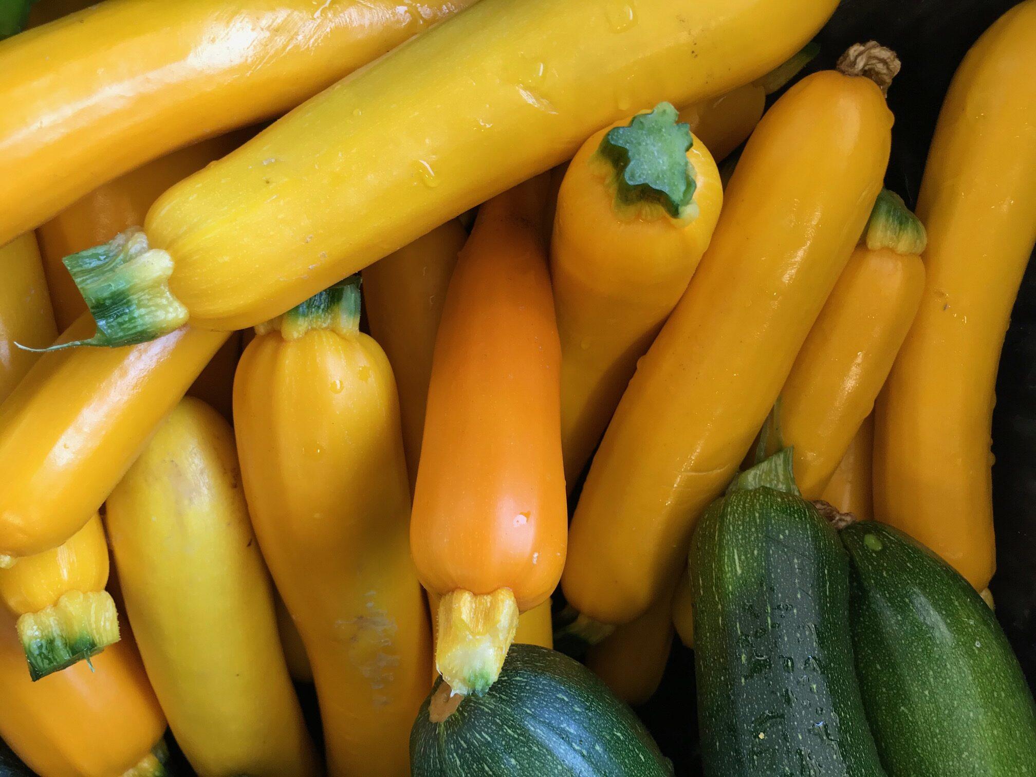 best organic produce in San Tan Valley