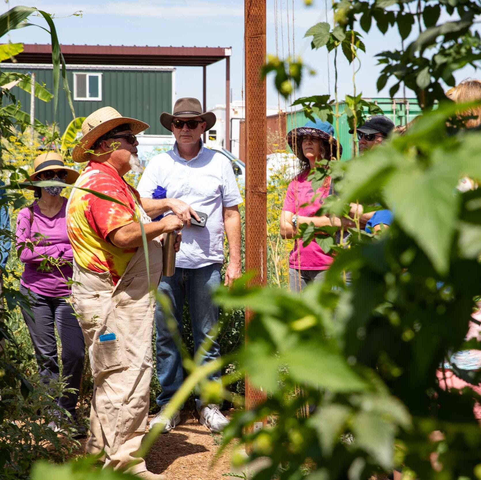 urban-farming-tours-in-Arizona