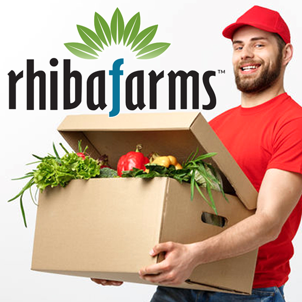 grocery delivery service Scottsdale