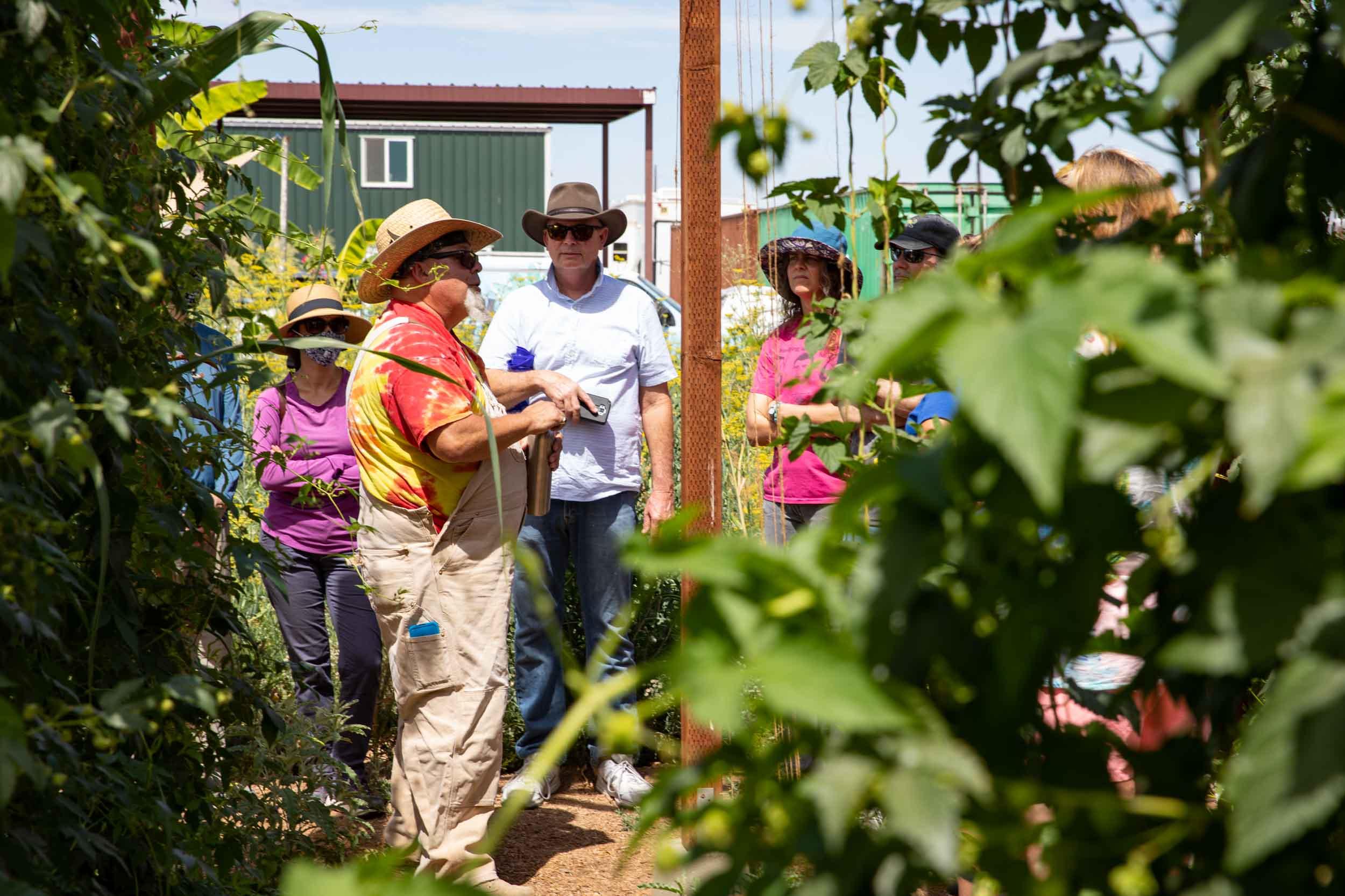 urban farming tours in Arizona