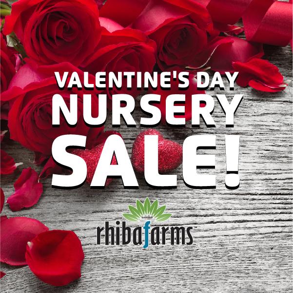 Valentine's Day Nursery Sale