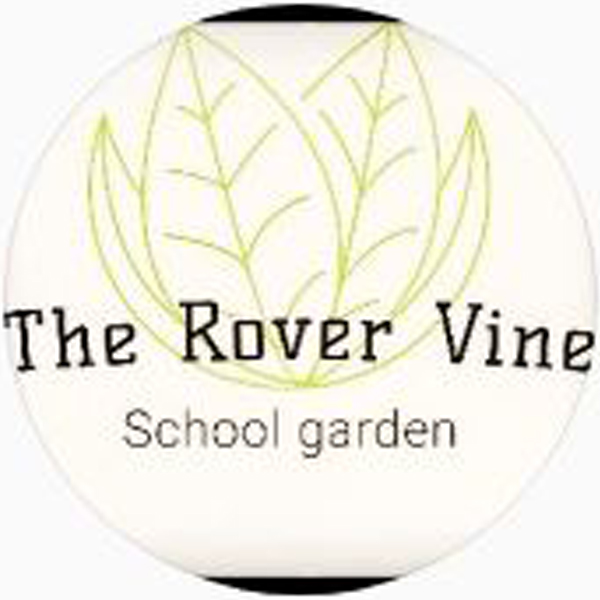 The-Rover-Elementary-Vine
