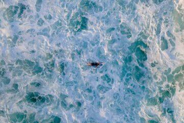 panoramas actividades acuaticas costas de chile