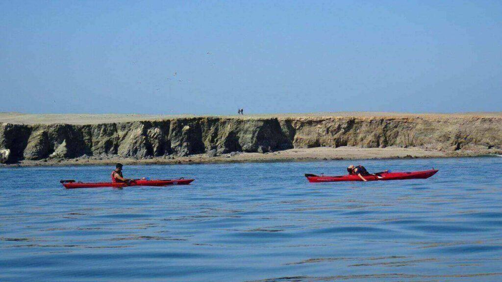 isla santa maria region de antofagasta nortexpediciones