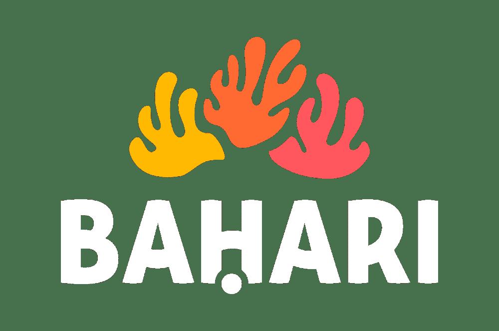 El blog de Bahari