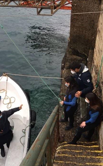 paola fernandez buceo en chile bahari