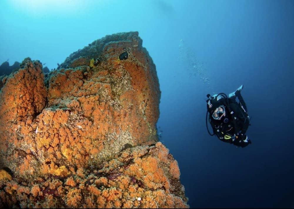 Iniciacion de Buceo en la Reserva Chañaral de Aceituno Yunco expediciones oceano fiestas patrias