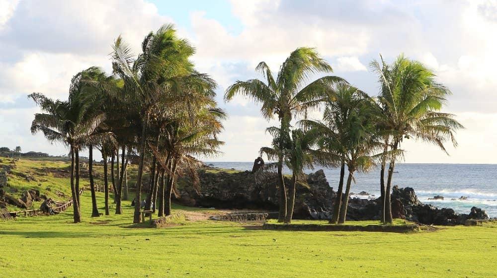 playa anakena rapa nui isla de pascua