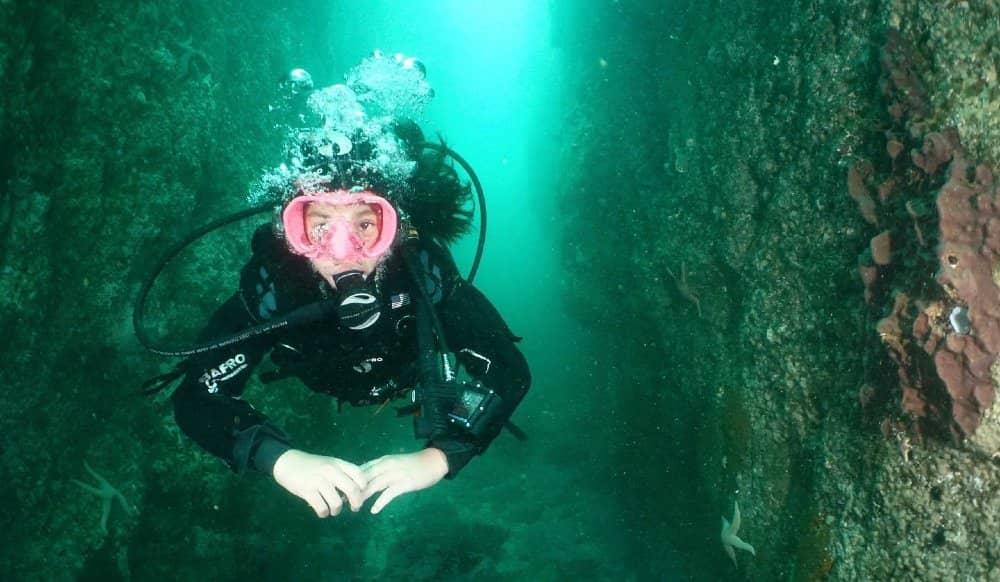 Buceo Doble Guiado en Pichidangui cinco oceanos pichidangui