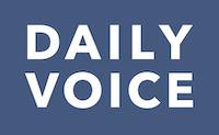 Daily voice logo