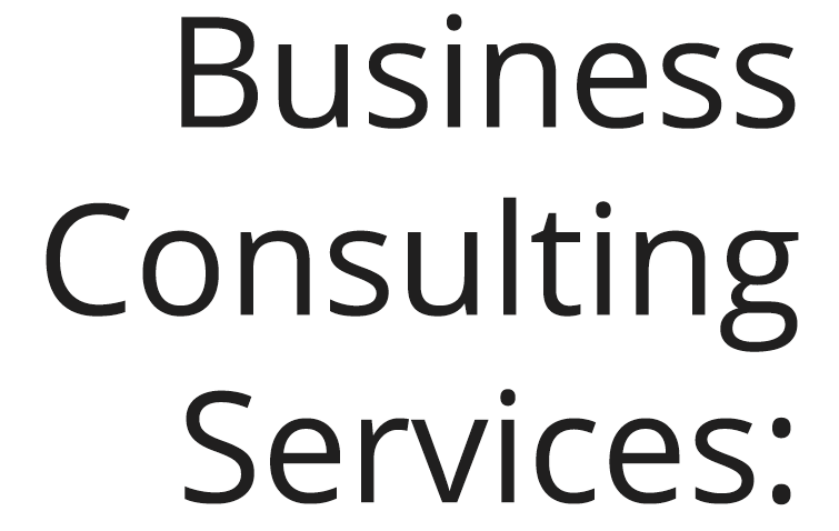 Business Consulting Services: