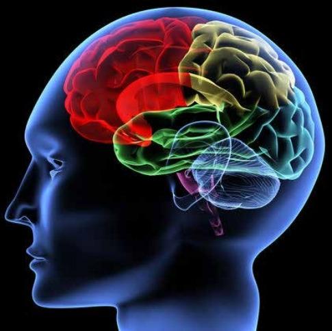 img-Neurotransmitters2