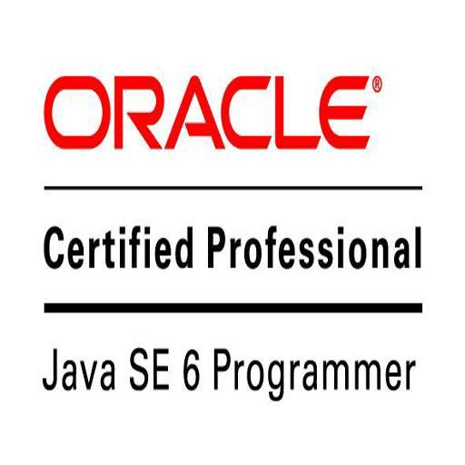 OCPJP 6 logo