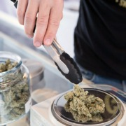 Weighing Cannabis-Looping For Diversion