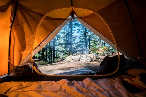 view from inside of tent