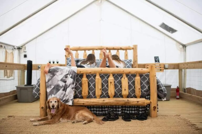 glamping tent kids bed dog blanket tent glamping