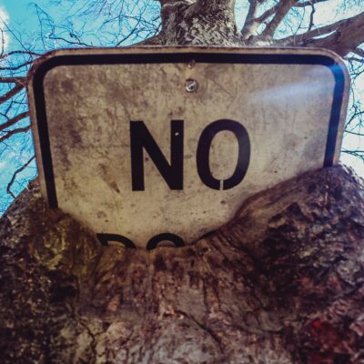 Slush Piles and Rejection Slips