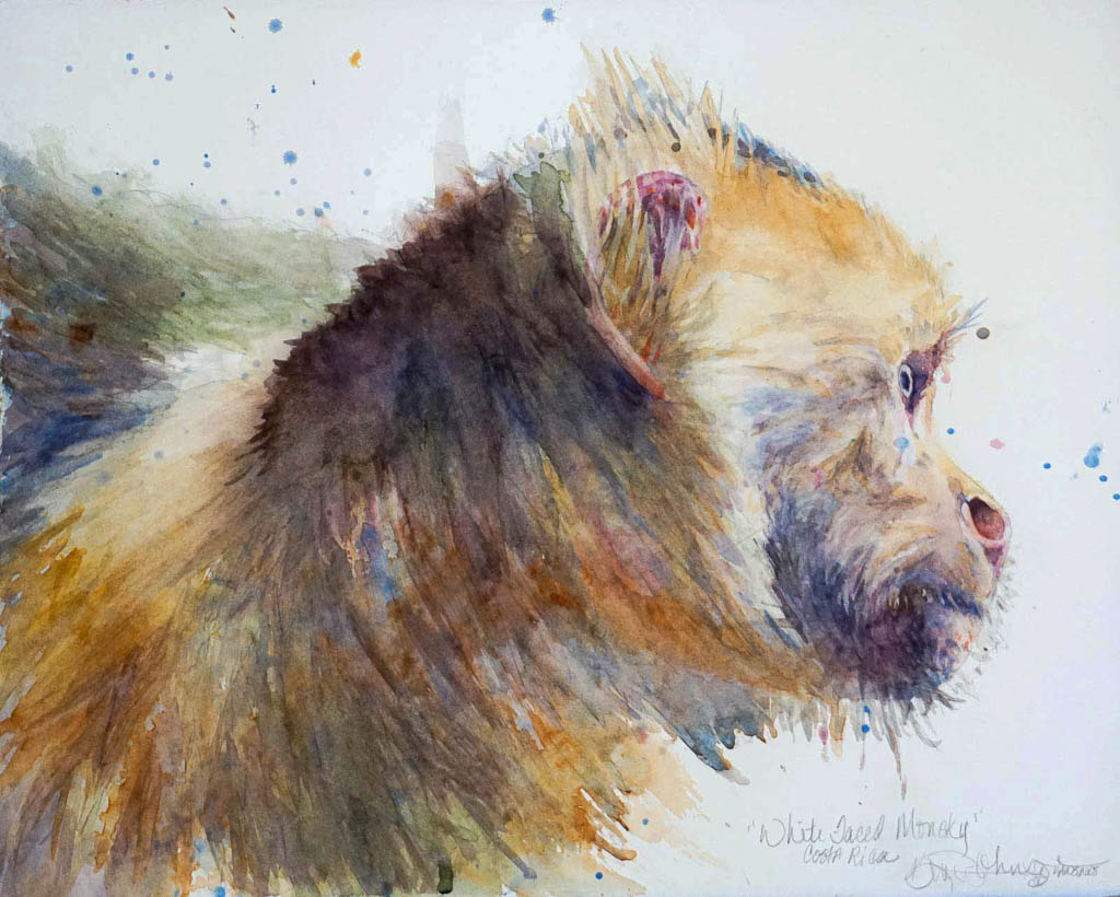 "11""x 15"" watercolor painting of a white faced monkey from Costa Rica"