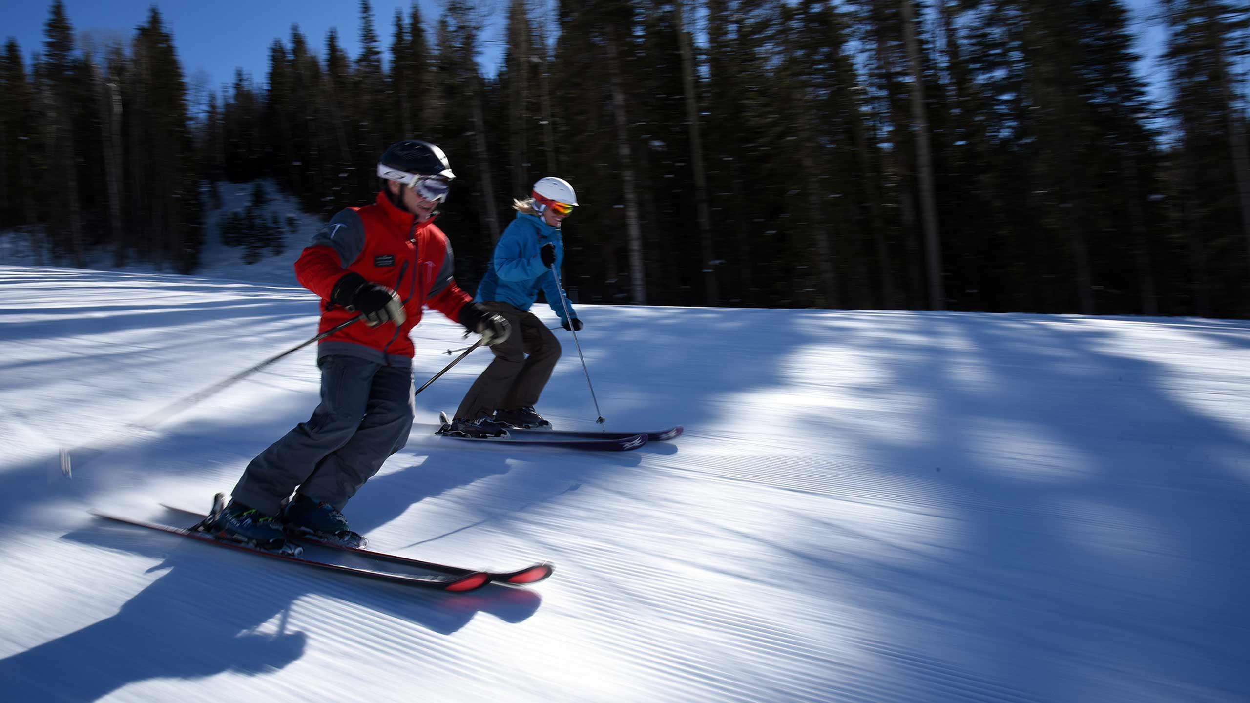 Ski Biomechanics