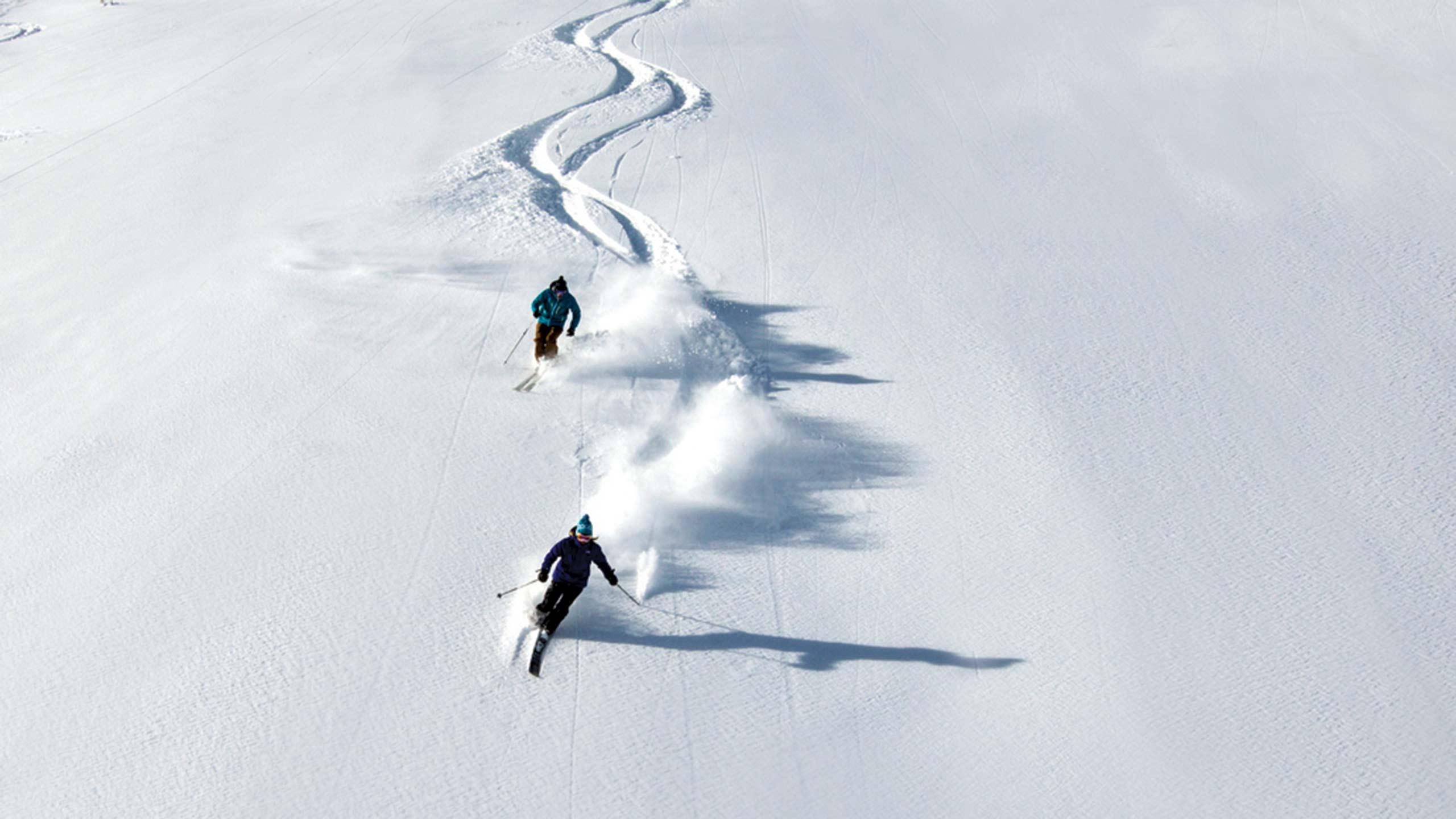Silver Skiers Taking Turns in Powder