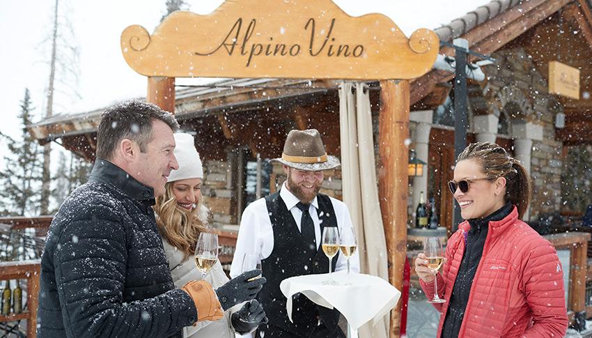 Alpino Vino