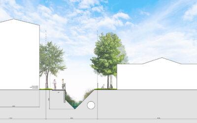 Bowker Creek Daylighting Feasibility Study