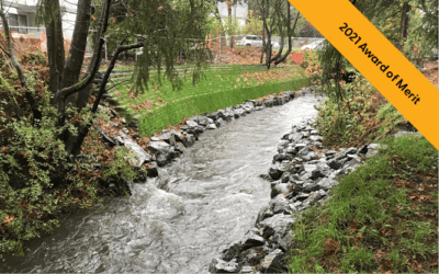 Urban Stream Rehabilitation – When the Toolbox Doesn't Apply