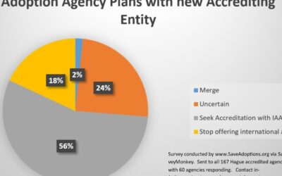 Only Half Of Agencies to Continue Offering International Adoption