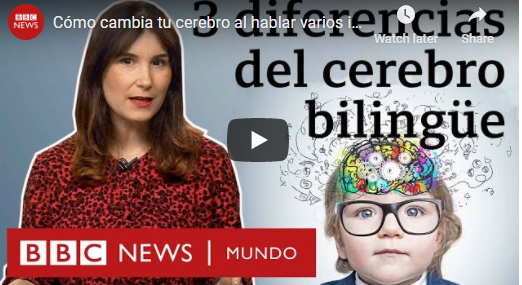 3 diferencias del Cerebro  Biligue