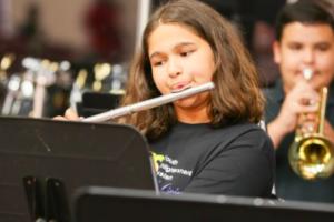 Desarrollar la actitud crítica para saber distinguir la buena música